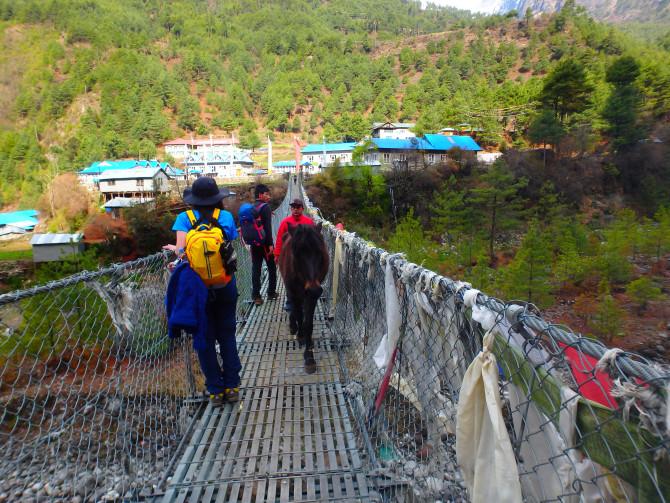 ネパール パクディン 橋
