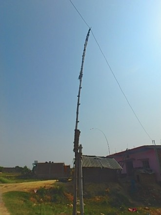 ネパール ルンビニ 電柱