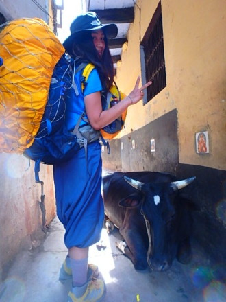 インド バラナシ 山田さんと牛