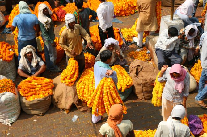 インド バラナシ 花市場
