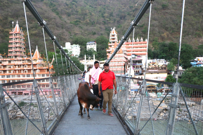 インド リシケシュ 橋②