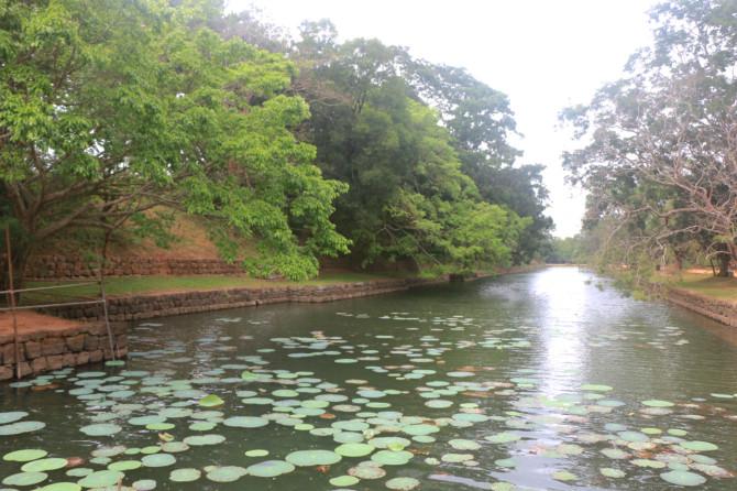 スリランカ シーギリヤ 水路