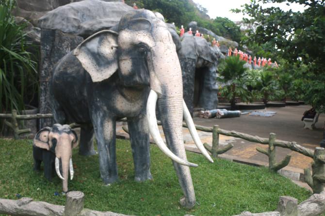 スリランカ ダンブッラ 象