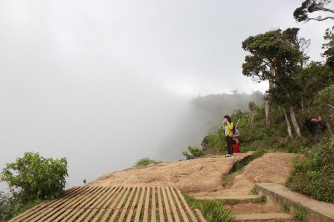 スリランカ ヌワラエリヤ ホートン⑨