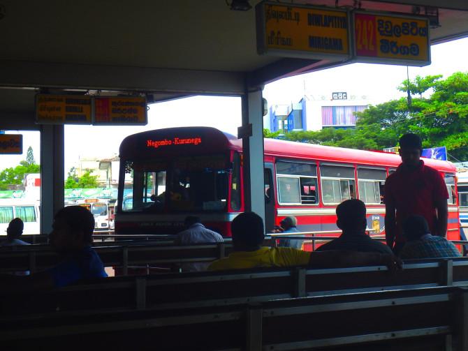 スリランカ ニゴンボ バス①