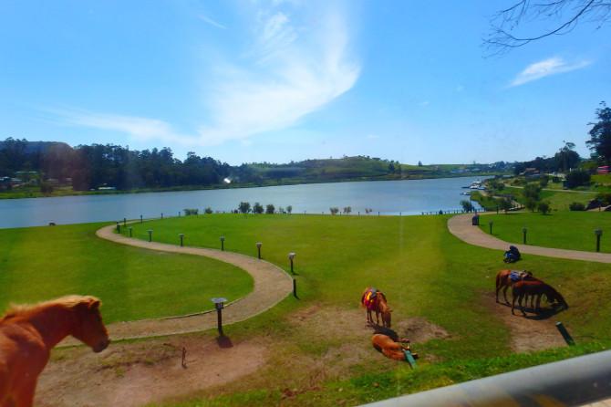 スリランカ ヌワラエリヤ 湖①