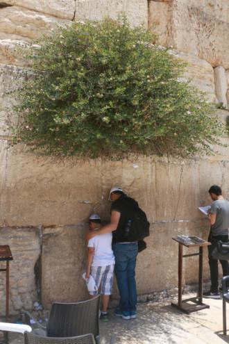 イスラエル エルサレム 嘆きの壁③