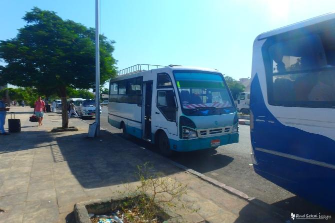 アスワン ラドワンモスク スーダンビザ バス