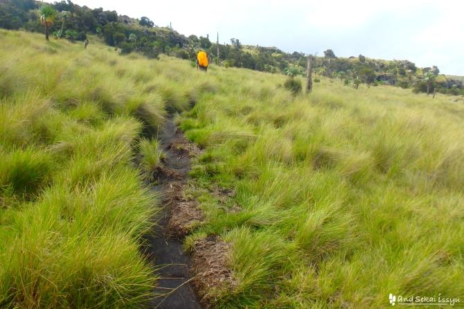 シミエン国立公園の道