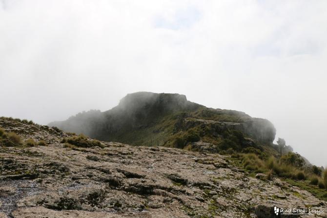 シミエン国立公園のイメットゴーゴー