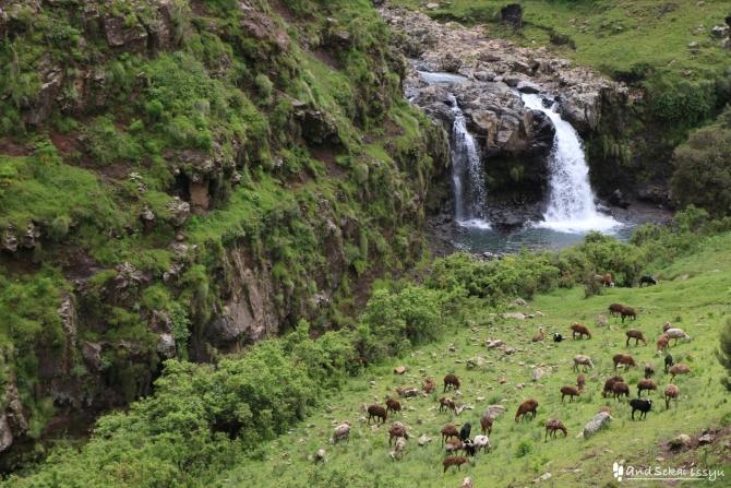 シミエン国立公園の滝