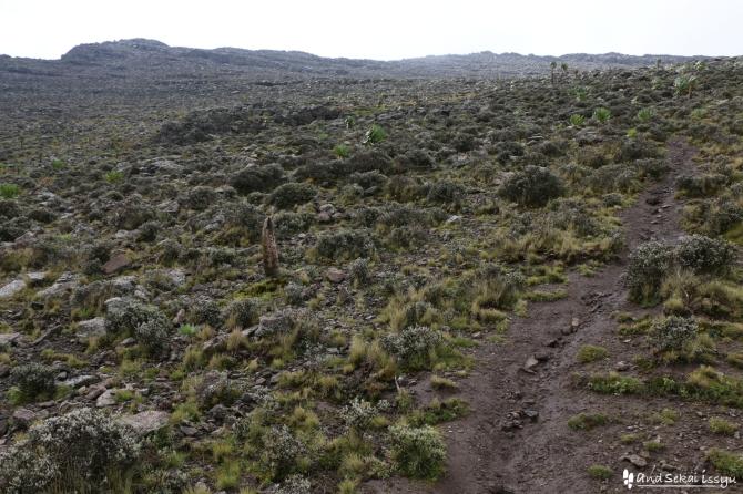 エチオピアのバイト山