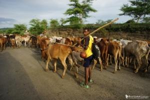 スーダン エチオピア 国境越え