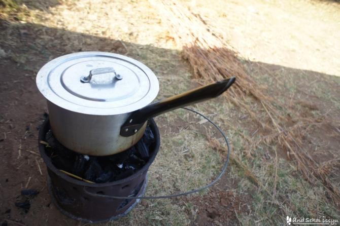 ザンビアでキャタピラ(芋虫)を食べたらアナフィラキシーショックになって病院へ救急搬送