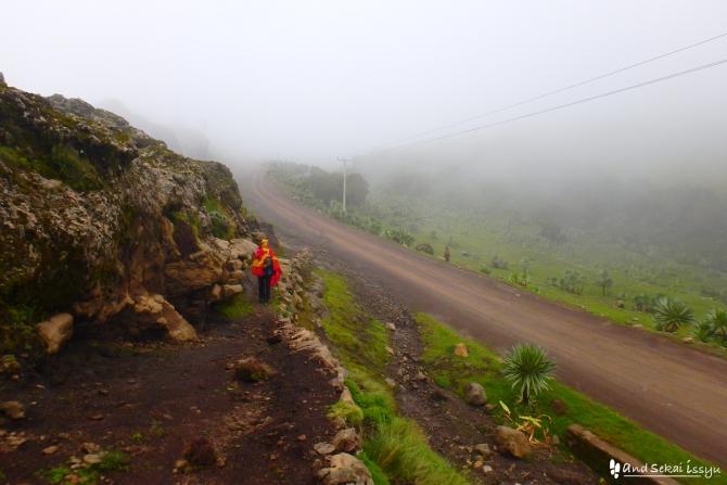 シミエン国立公園の道路
