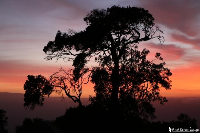 ンゴロンゴロ自然保護区のサンライズ