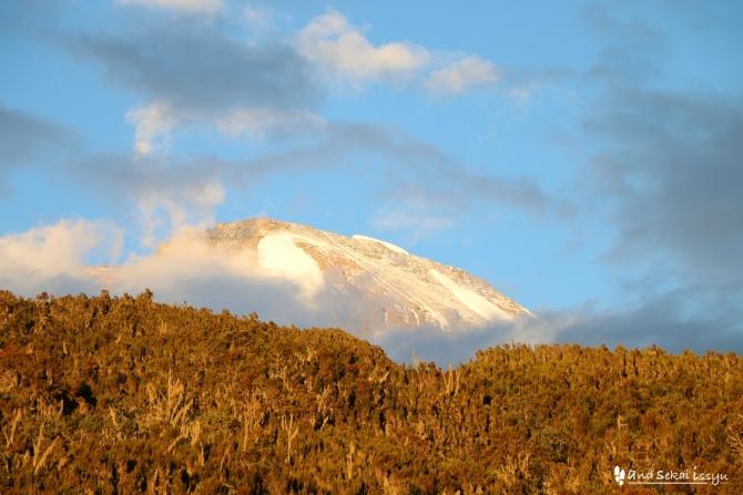 キリマンジャロ登山初日、マチャメゲートを出発