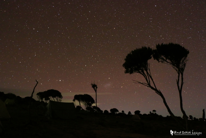 シラキャンプから眺めた星空