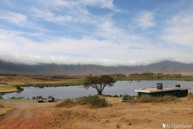 ンゴロンゴロ自然保護区の池