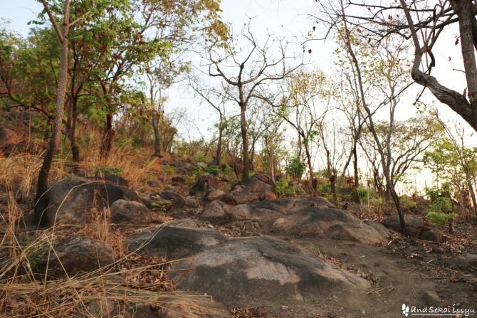 ンダンダの丘