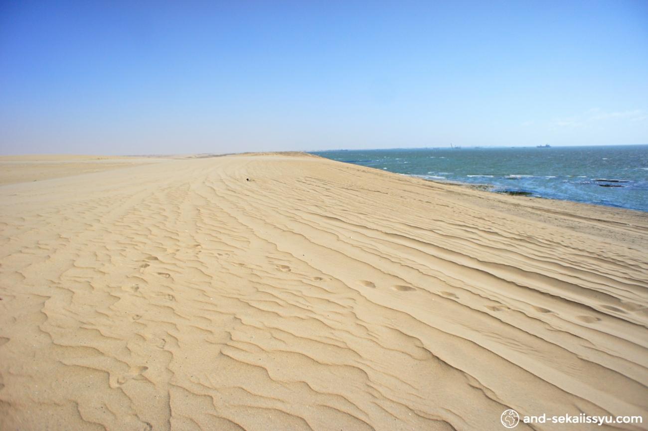 スワコップムントからムーランドスケープ、ウェルウィッチア、フラミンゴコロニー、Dune7にレンタカーで行ってきた