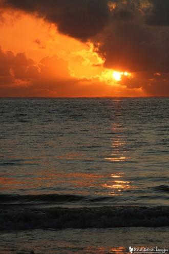 ブエジュの海