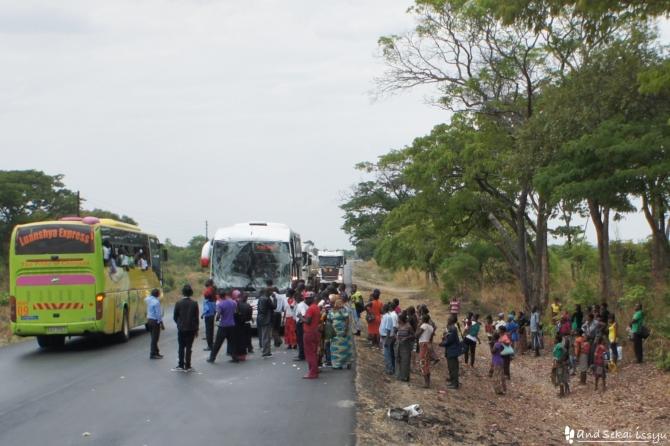 チンゴラまでの道で見た事故