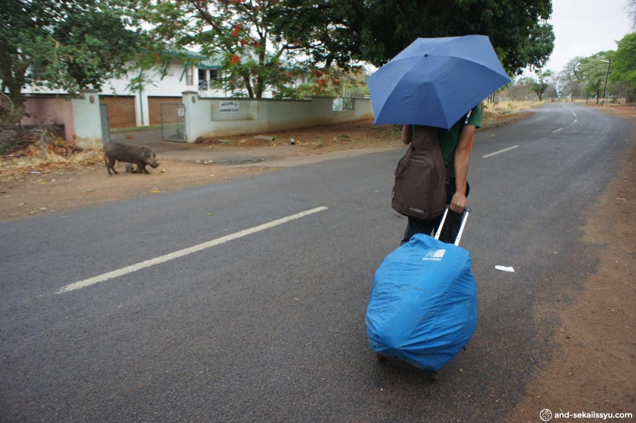 ジンバブエ・ボツワナ移動国境越え情報