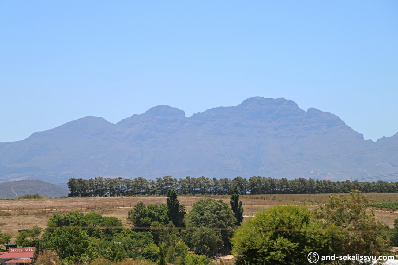 南アフリカレンタカーの旅|ステレンボッシュでワイナリー巡り
