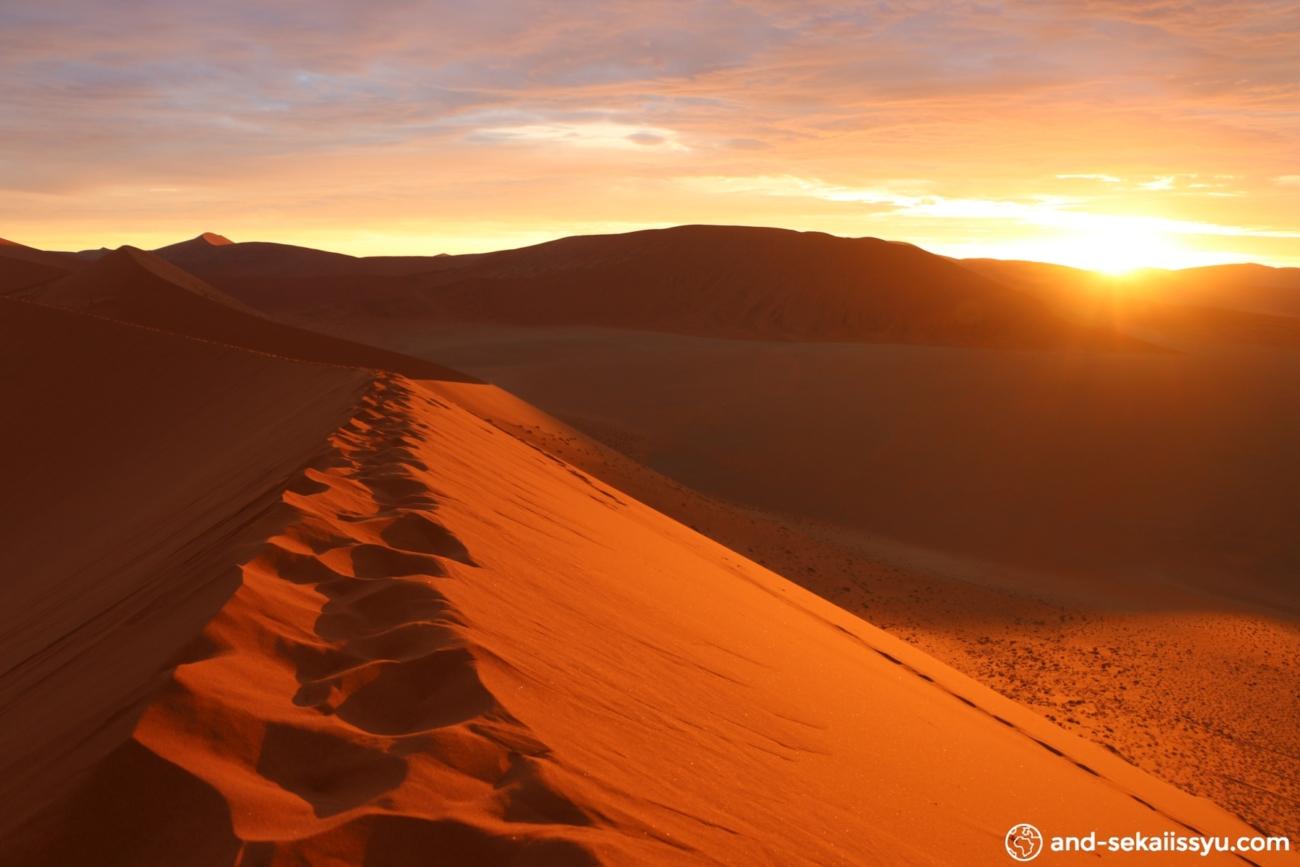 ナミブ砂漠の画像 p1_31
