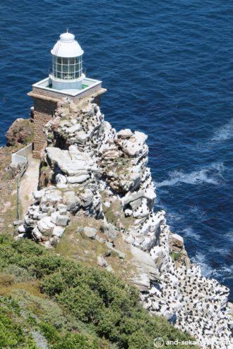 ケープポイントの灯台