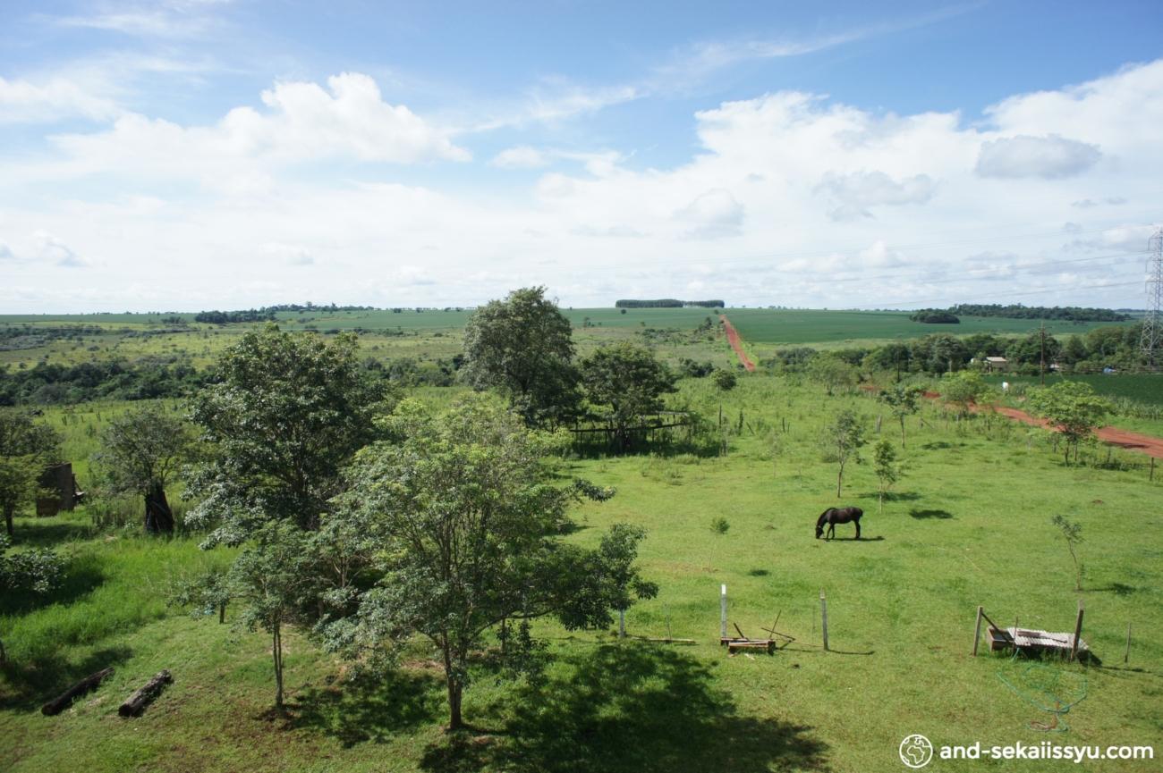 イグアス移住地の宿「民宿小林」