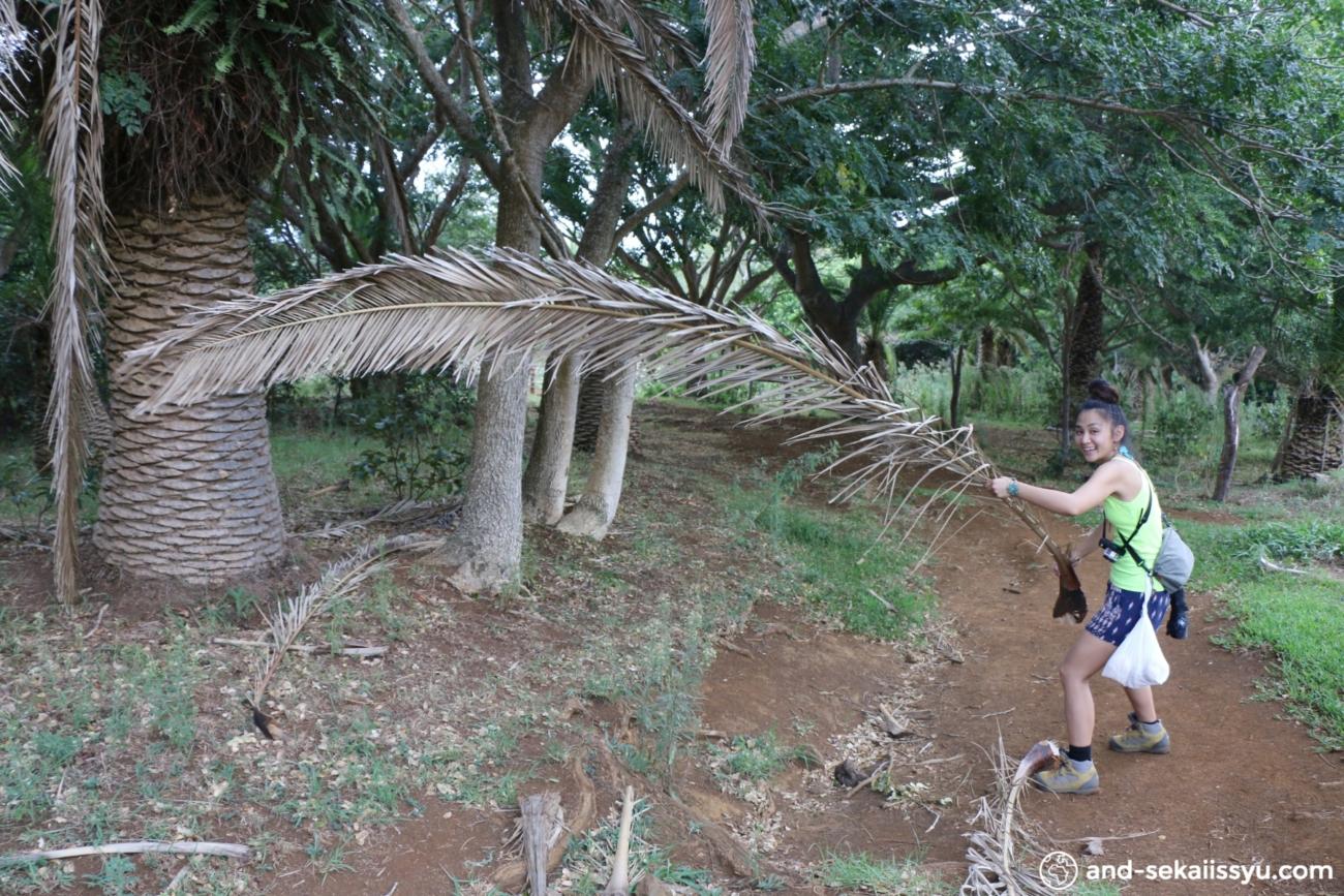 イースター島のオロンゴ儀式村