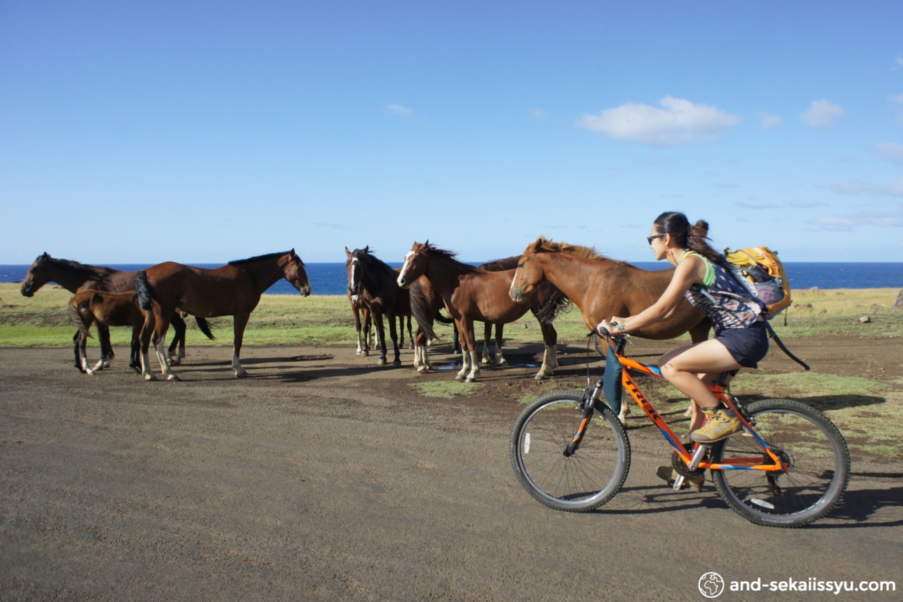 イースター島のレンタル自転車