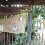 ペンション園田|パラグアイのイグアス移住地にある宿(ホテル)情報